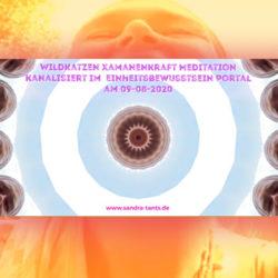 Wildkatzen-Xamanenkraft-Meditation